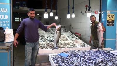 Balıkçıların ağına 10 kiloluk levrek takıldı