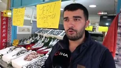 - Hamsi 5 liraya düştü