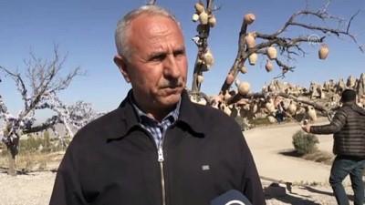 Kapadokya'da turist sayısındaki artış devam ediyor - NEVŞEHİR