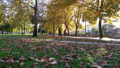 Sakarya'da Kasım ayında yazdan kalma günler yaşanıyor