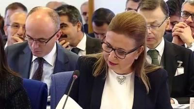 Ticaret Bakanı Pekcan: ''Eximbank'ın sigorta imkanlarını genişletiyoruz' - TBMM