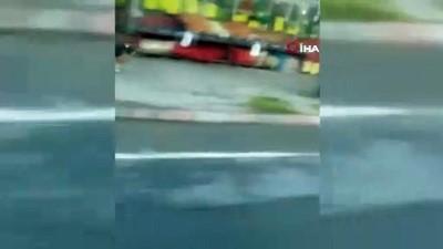 sokak kopegi -  Halk otobüsü ile şoförün kıskandıran dostluğu