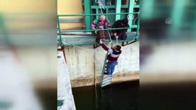 HES'te suya düşmek üzere olan kedi yavrusunu teknisyen kurtardı - DENİZLİ