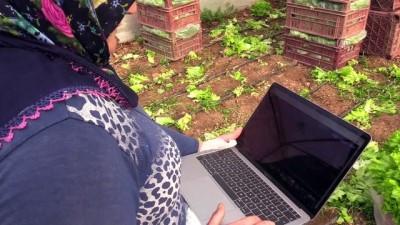 Mevsimlik işçiler AA'nın 'Yılın Fotoğrafları' oylamasına katıldı - BİLECİK