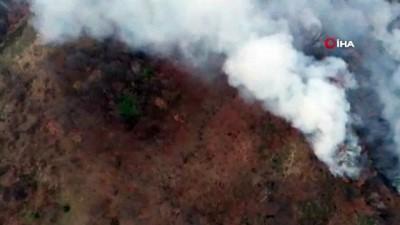 orman mudurlugu -  Bursa'da iki farklı bölgede anız yangını