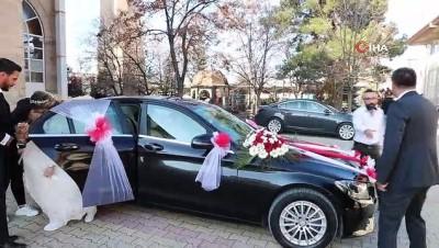 Sosyal medyadan 'Mercedes gelin arabası' isteyen çifte başkandan jest