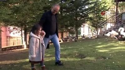 Almanya'da yaşayan aile otizmli kızları Mira'nın konuşması için umudu Türkiye'de arıyor