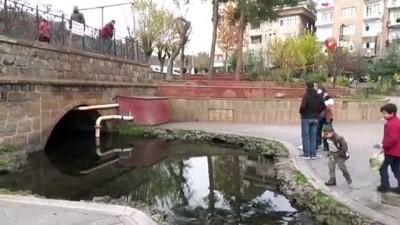 Diyarbakır'ın tarihi Anzele suyu 'Balıklıgöl'e döndü