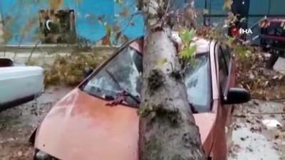 sanayi sitesi -  Fırtınanın devirdiği ağaç otomobili hurdaya çevirdi, yaşananlar kameraya böyle yansıdı