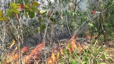 Giresun'da 4 noktada örtü yangınları devam ediyor