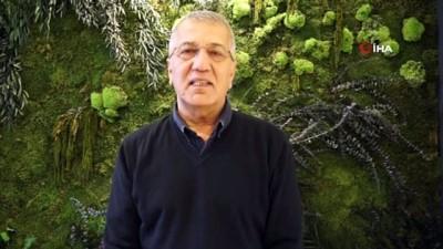 Mersin'deki ağaç katliamı ile ilgili 1 kişi gözaltına alındı