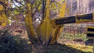 Yeni Yusufeli yerleşim yeri ağaçlandırılıyor - ARTVİN
