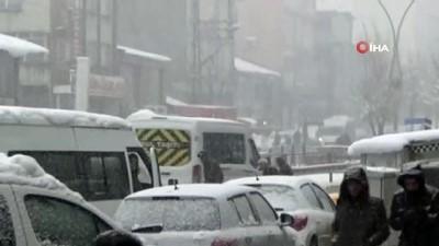 Yüksekova'da lapa lapa kar yağdı