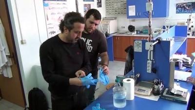 Balon balıklarından sağlık sektörü için ham madde üretildi - HATAY