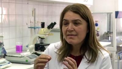 Türk akademisyenden saç derisi yaralarının iyileşmesini hızlandıran serum - ANKARA