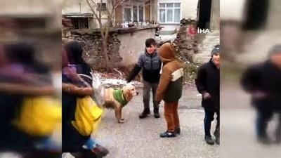 Minik yüreklerin yürek ısıtan hareketi...Sokak köpeği üşümesin diye elbise giydirdi
