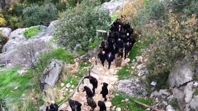 Sanayi ve Teknoloji Bakanı Mustafa Varank, Gilindire Mağarası'nda incelemede bulundu - MERSİN