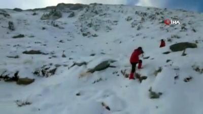 Kayıp 2 dağcı zirvede işte böyle aranıyor