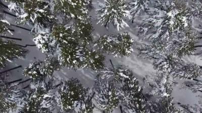 Burdur'da doğaseverler kar yağışını fırsata çevirdi - BURDUR