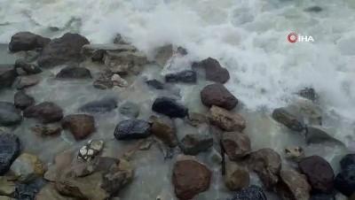 Düzce'de şiddetli rüzgar ve yağış etkili oluyor