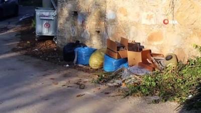 Bahçe atıklarını zamanında çıkarmayanlara ceza uygulanıyor