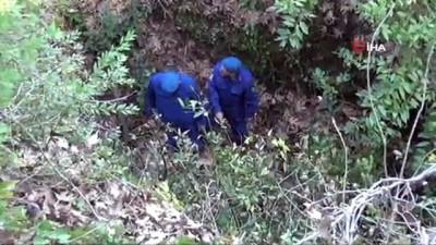 kurtarma ekibi -  Safari rehberinin feci ölümü... 20 metrelik uçurumdan düştü