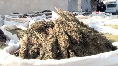 Diyarbakır'ın Lice İlçesi'nde dün yapılan operasyonlarda 5 ton uyuşturucu ele geçirildi