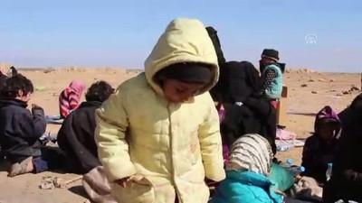 ABD'nin YPG/PKK'ya destek bahanesi kalmadı - DEYRİZOR