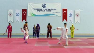 'Wushu kung fu, Orta Asya'dan bize kalan bir mirastır' - BARTIN