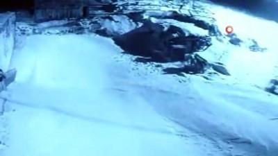 guvenlik kamerasi - Köye inen aç kurtlar köpeğe saldırdı