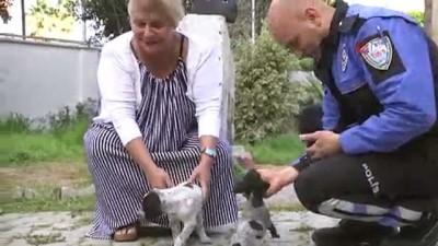 Anne ve yavru köpeklere polis şefkati
