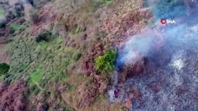 Sinop'ta ormanlık alanda yangın çıktı