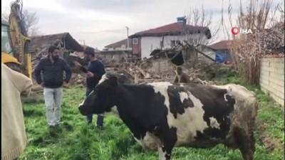 ogretmen -  Depremin vurduğu Acıpayam'da evler yıkıldı