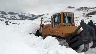 Baharda 4 metrelik karla mücadele ediyorlar - AĞRI