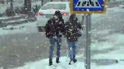 Ahlat'ta kar etkili oldu - BİTLİS