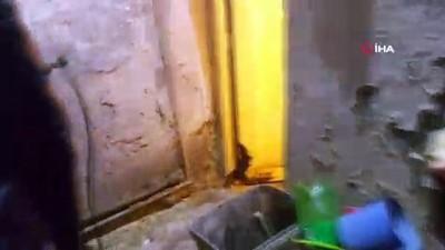 """İstanbul'da """"kobra zehri"""" operasyonu: 541 tüp zehir ele geçirildi"""