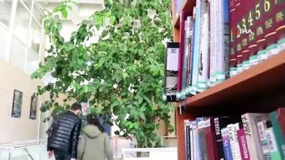 Bu kütüphane 51 yıl önce dikilen limon ağacı sayesinde limon kokuyor