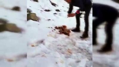 Esnaflardan topladığı etleri yaban hayvanları için doğaya bıraktı