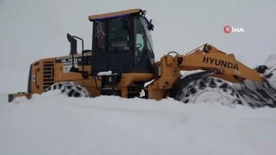 cig dusmesi -  Van-Bahçesaray yolu yoğun kar yağışı nedeniyle ulaşıma kapandı