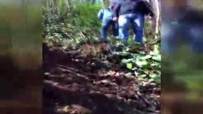 Yer altındaki imalathanelerde kaçak silah üretmişler - ARTVİN