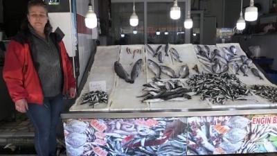 Tezgahındaki balıklarla çocuklar ve kediler arasında bağ kurduruyor - ORDU