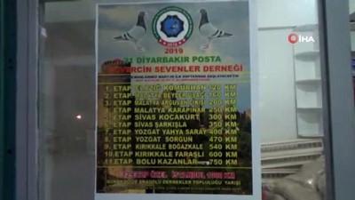 uygarlik -  Malatya'dan salınacak kuşlardan Diyarbakır'a ulaşanın nesli koruma altına alınacak