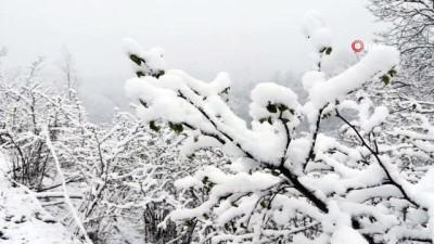 Nisan ayında yağan kar şaşırttı