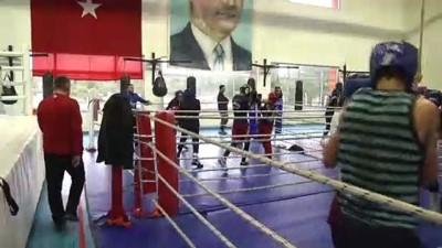 boksor - Boksta yıldız millilerin Kastamonu kampı başladı