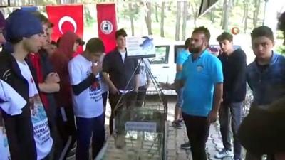 Öğrenciler deniz kaplumbağaları için kürek çekti