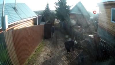 - Rusya'da Elektrik Direği Sokaktaki Kadının Üzerine Yıkıldı