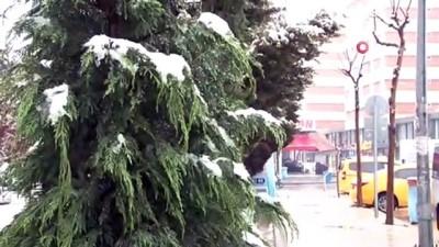 Van'a Nisan ayında kar sürprizi İzle