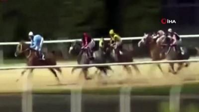 Attan düşen jokey, arkadan gelen atların altında kalmaktan son anda kurtuldu