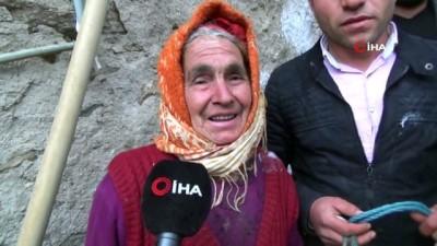 Bir istedi, beş ineği oldu...Sabiha Nine'nin yüzü yardımsever vatandaşlar sayesinde güldü