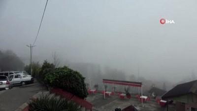 Zonguldak'ta sis etkili oldu, görüş mesafesi 25 metreye düştü
